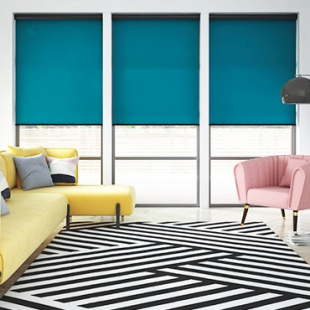 Envision Roller Shades