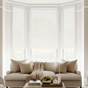 Envision Voile Roller Shades